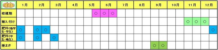 tamanegi-Schedule