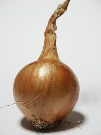 tamanegi-1