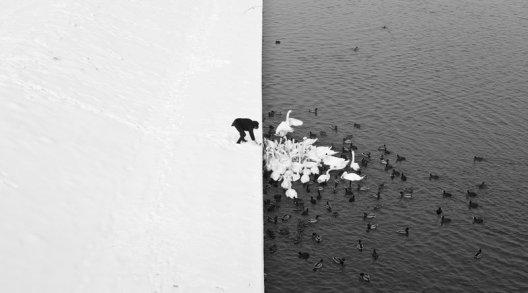 el contraste del invierno en Krakow, Polonia