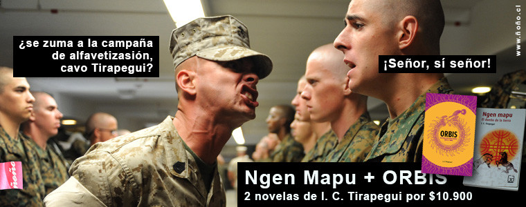 2 novelas de I. C. Tirapegui