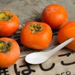 Plaqueminier/ Kaki Hiratanenashi (astringent) / D.lotus