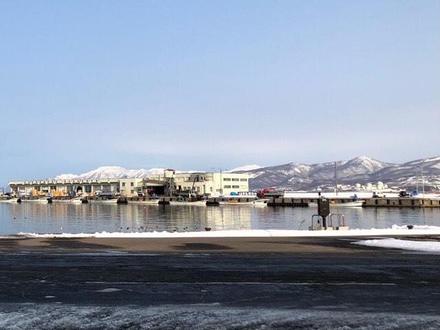 風速比較岩内(共和)・美幌・釧路・札幌