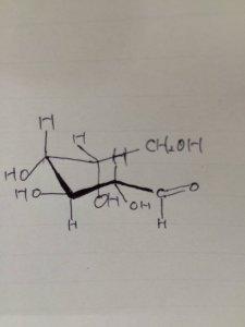 糖の鎖状構造