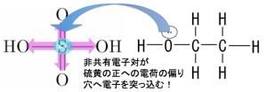 硫酸エステル