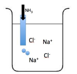 塩化ナトリウム水溶液 アンモニア