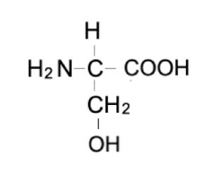 セリンの構造式