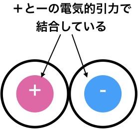 電気的引力でイオン結合をしている