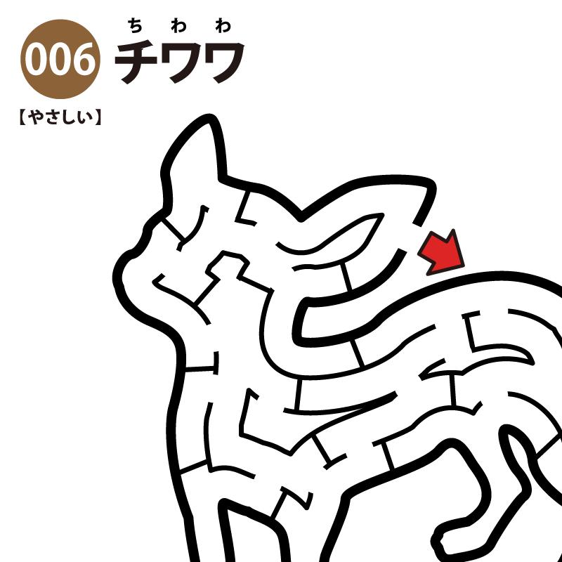 【迷路】チワワ(易しい) アイキャッチ