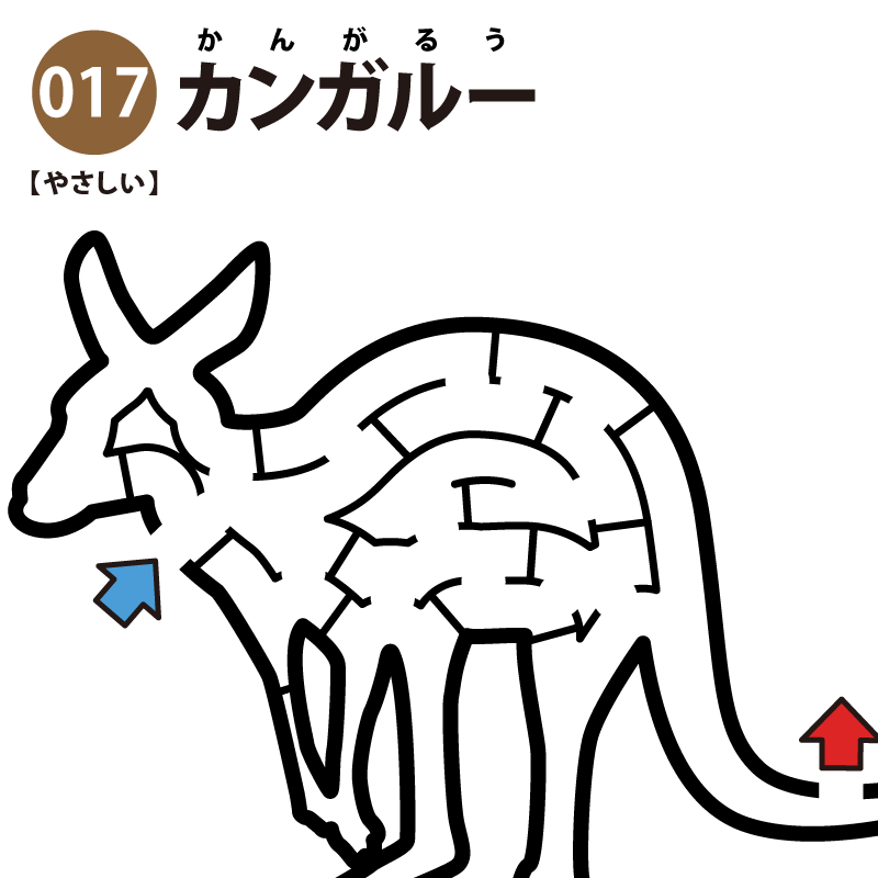 【迷路】カンガルー(易しい)アイキャッチ