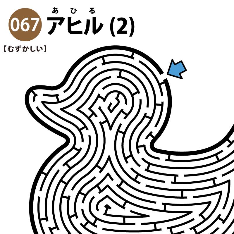 アヒルの難しい迷路(2) アイキャッチ