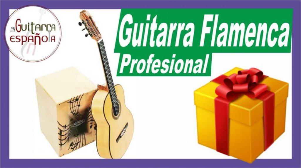 guitarra flamenca prudencio saez 4fp