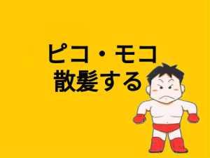 【2017年7月】ピコモコ散髪
