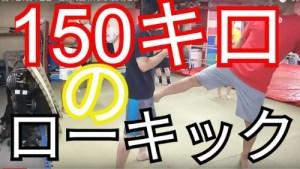 【80キロ】【150キロ】のローキック