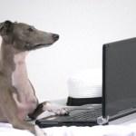 ノートパソコンの選び方は自分でスペックの見方を調べてみよう