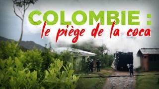 Colombie : le piège de la coca