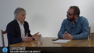 Jean-Claude et Carl #7: L'effectivité