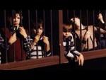 Les orphelins de Duplessis – Le documentaire