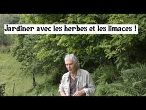 Le potager de Bernard Bertrand (avec herbes, limaces et légumes)