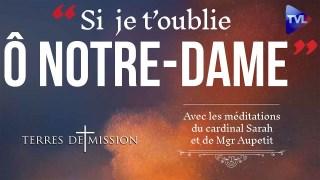 Notre-Dame : n'oublions pas ! – Terres de Mission n°169 – TVL