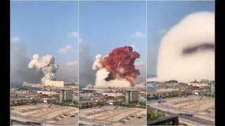 Philippe Ploncard d'Assac sur l'explosion Au Liban