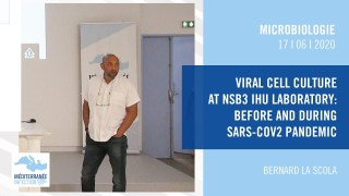 Viral cell culture at NSB3 IHU laboratory : before and during SARS-CoV2 pandemic