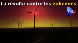 Focus exclusif : La révolte contre les éoliennes