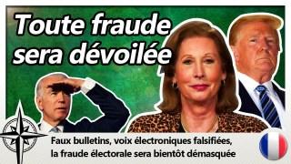 La fraude électorale due aux « bugs informatiques »