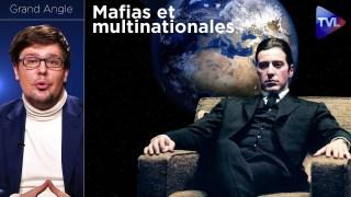 Mafias et multinationales : vers une planète bananière ? – Grand Angle (Pierre-Yves Rougeyron) – TVL