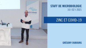 Zinc et COVID-19