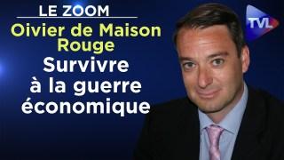 Survivre à la guerre économique – Le Zoom – Olivier de Maison Rouge – TVL