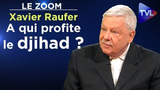 A qui profite le djihad ? – Le Zoom – Xavier Raufer – TVL