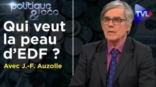 Qui veut la peau d'EDF ? – Politique & Eco n°295 avec Jean-François Auzolle – TVL