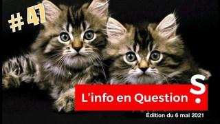 lNF0 en OU3STl0NS #47 – LlV3 avec Amélie Paul