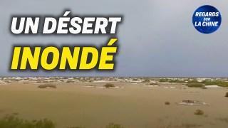 Le plus grand désert de Chine inondé par la pluie ; Enquête sur la réputation du PCC dans le monde