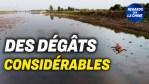 Un comté inondé demande de l'aide ; Marine américaine : le plus grand exercice depuis 40 ans