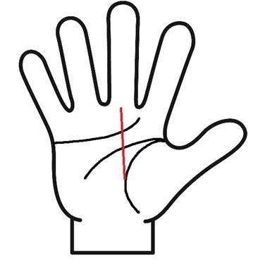 生命線から中指に伸びる