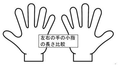 右手左手の子宝線
