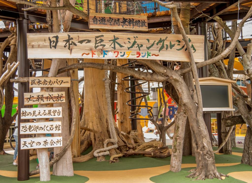 日本一巨大なジャングルジム 高知