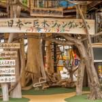 """【日本一の""""巨木ジャングルジム""""】に行きました!"""