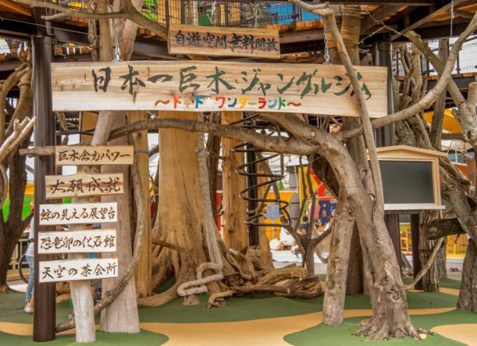 日本一巨木なジャングルジム 高知