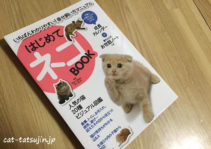 catbook4-1