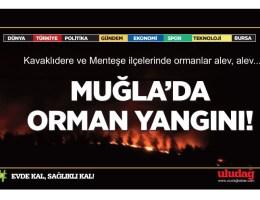 Muğla'nın Kavaklıdere ve Menteşe ilçelerinde orman yangını