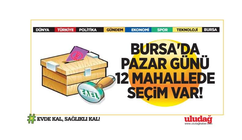 Bursa'da pazar günü 12 mahallede seçim var