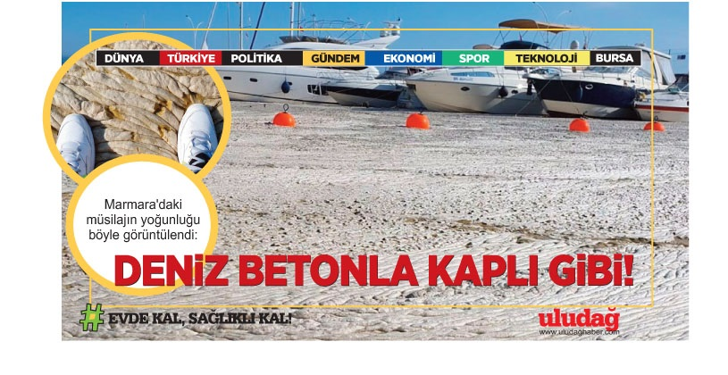 Marmara'daki müsilajın yoğunluğu böyle görüntülendi: Deniz betonla kaplı gibiydi