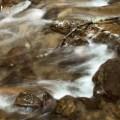 ゆく川の流れ