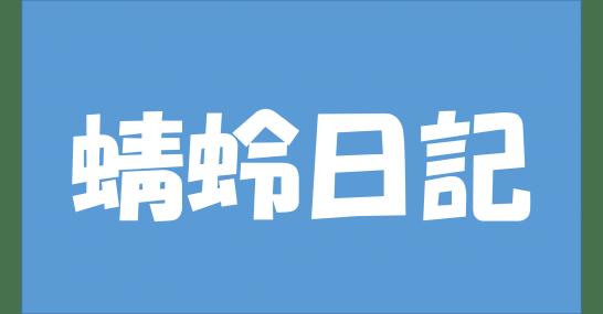 蜻蛉日記町の小路の女うつろひたる菊品詞分解現代語訳