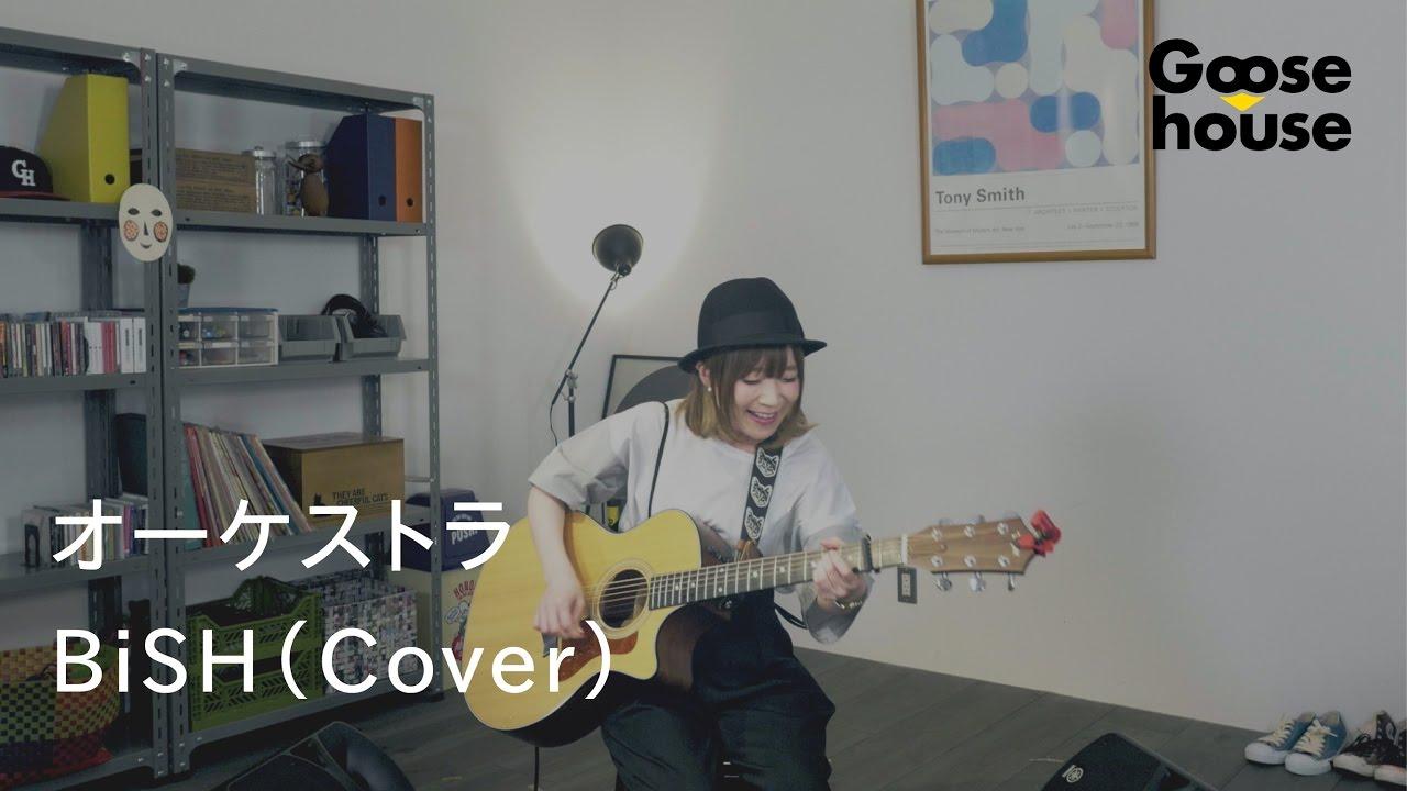 【Goosehouse/まなみん】オーケストラ BiSH(Cover)