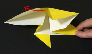 hoshi1.origami.10