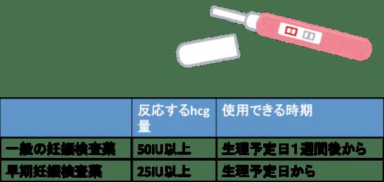 妊娠検査薬が陽性反応を示す時期