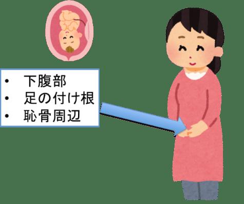妊娠初期の胎動の位置